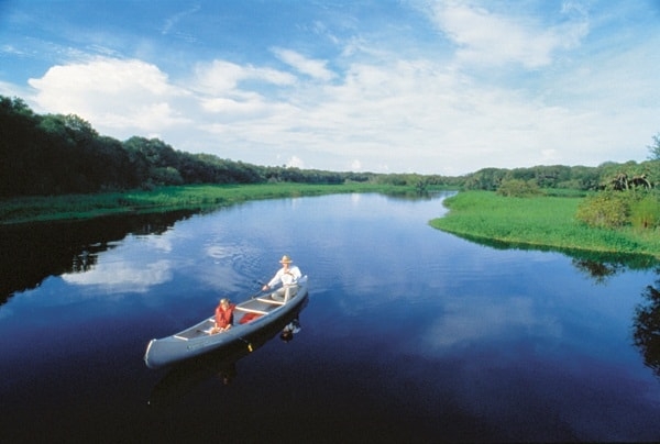 canoe on the myakka river at Myakka River State Park