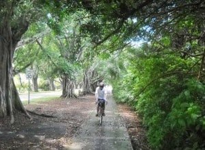 Biking Jupiter Island: Bike route along Bridge Road