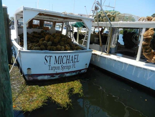 Anclote key visit dazzling island and tarpon springs for Tarpon springs fishing