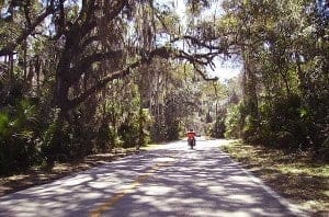 Road Trip: Ormond Scenic Loop and Trail