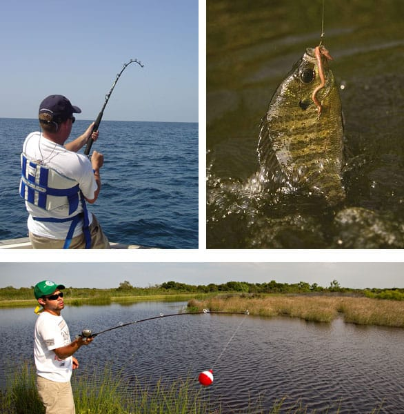 Try fishing here are 2018 license free fishing days in for Non resident florida fishing license