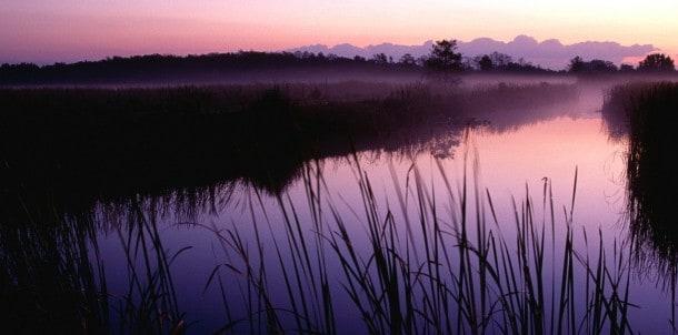 Sunset at the Loxahatchee National Wildlife Refuge