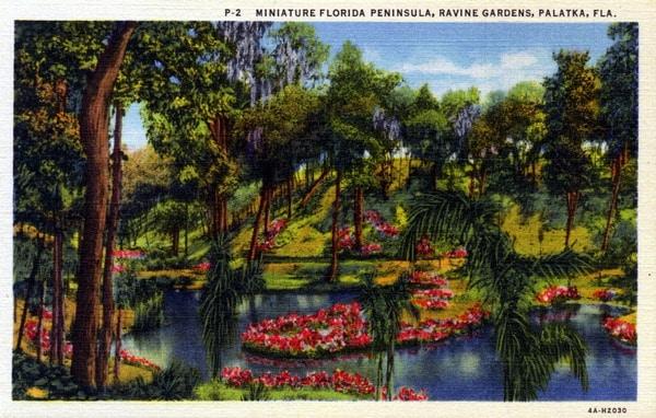 Azalea gardens at Ravine Gardens State Park, Palatka, Florida