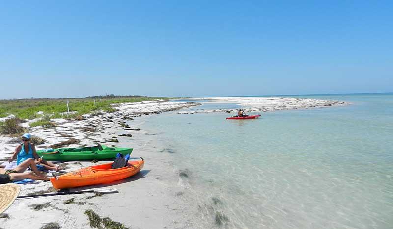 Caladesi Island Rentals